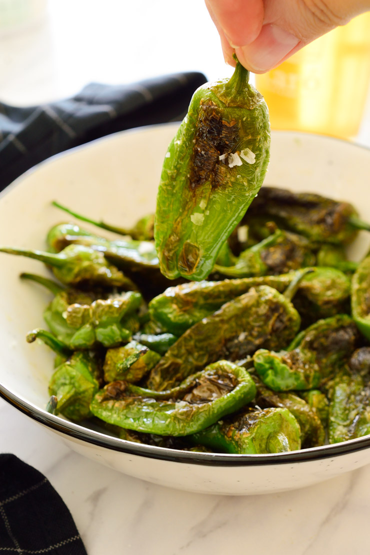 Fried padron peppers in a white bowl.