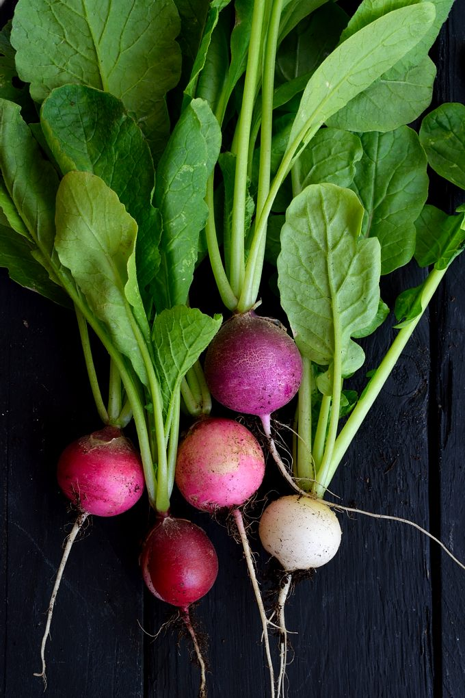 Radish risotto is a delightful and easy dish to prepare. Any kind of radishes are great in this dish and if you've got fresh ones from the garden, even better!